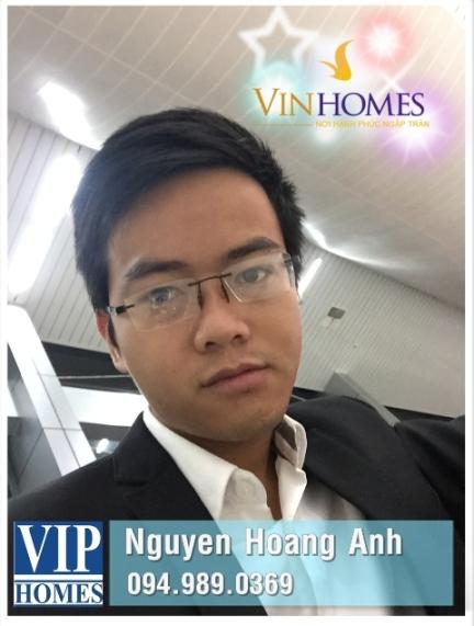 Hoang Anh VIPHOMES