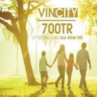 Du-an-vincity-390x250